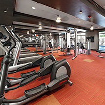 3350 at Alterra fitness center with ellipticals, treadmills and fitness equipment